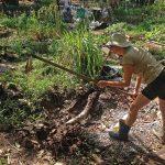 Voluntária preparando a terra durante mutirão na Horta das Corujas
