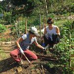 Voluntárias plantando mudas na Horta das Corujas